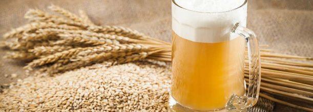 常见的小麦啤酒有哪些种类